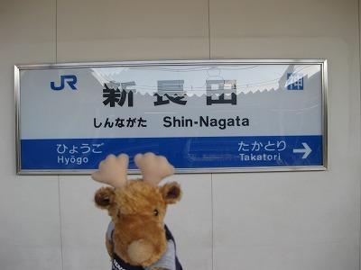 Img_1248